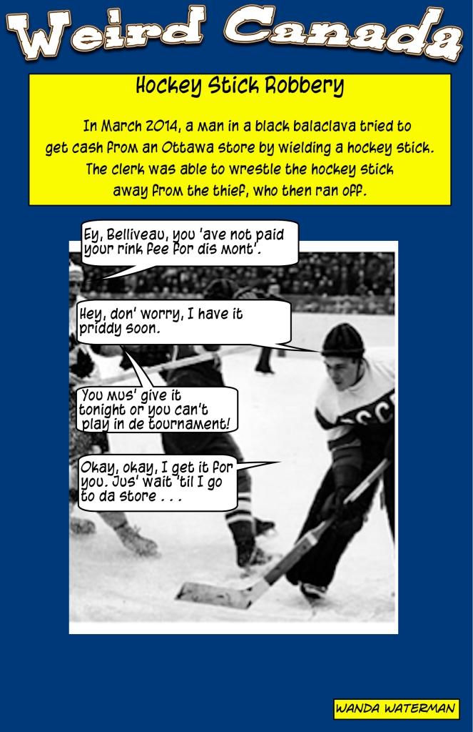 weirdcanadahockeystickrobbery